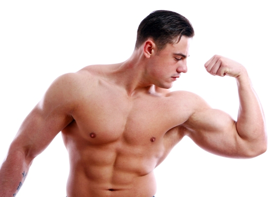 Testosterones function